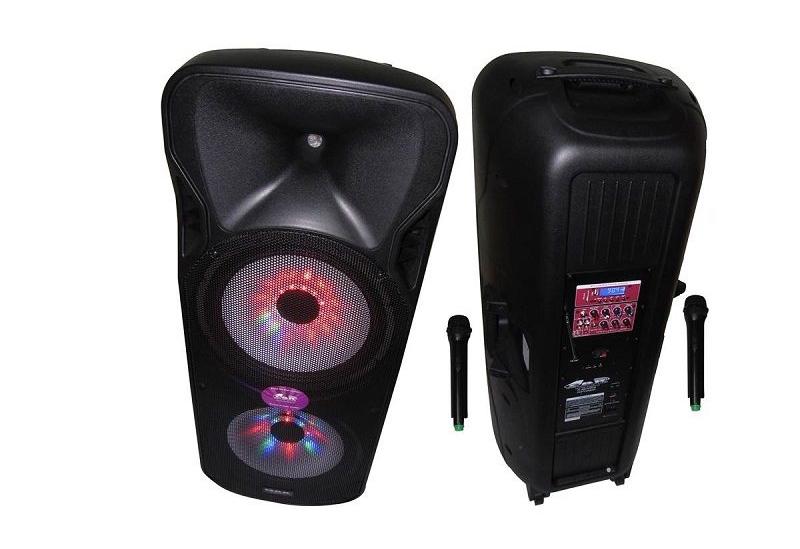 Bafle portatil activo con bateria-Bluetooth-Microfonos inalambricos-FM-MP3-Luces