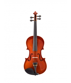 VIOLIN CERVINI HV-100
